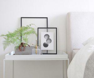 シンプルな寝室に、癒しのシダの木